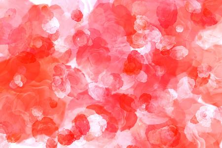 最高の背景に自然の赤いバラ 写真素材