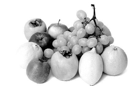 limon: Many Sketch painting fruits isolated on white background Black and white