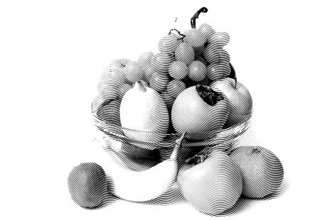 limon: Sketch painting fruit set isolated on white background Black and white Illustration