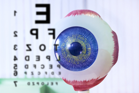 Ophthalmology oculus sample closeup. Ophthalmology, eye model close-up. Chart test for ophthalmologist doctor. Eyeball