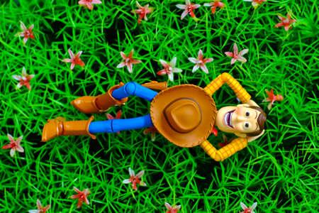 supervillian: relax woody in the garden Editorial