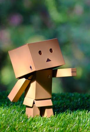 romp: Robot box romp in the grass