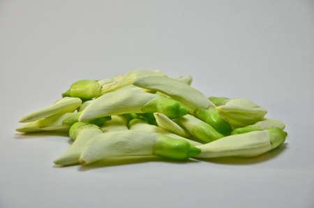 vegetative: Vegetable Humming Bird Sesban Agasta on white background