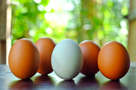 Many of the eggs is arranged on a wooden table.