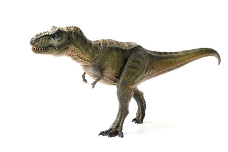 Tyrannosaurus rex dinosaurs toy green isolated on white background. closeup dinosaur and monster model .