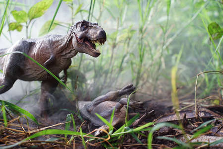 Tyranosorus is eating food in the misty forest. on nature background. closeup dinosaur and monster model .