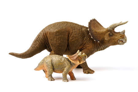 Triceratop dinosaurs with baby isolated on white background. closeup dinosaur and monster model .