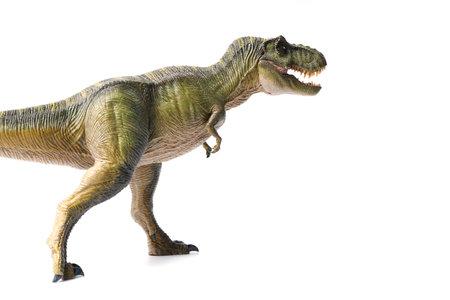 Tyrannosaurus rex dinosaurs toy green isolated on white background. closeup dinosaur and monster model . Reklamní fotografie