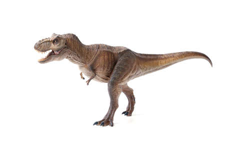 Tyrannosaurus rex dinosaurs toy brown isolated on white background. closeup dinosaur and monster model . Reklamní fotografie