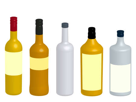 Different Kinds of Spirits Bottles 3D Vector