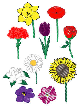 Ten Common Flowers Illustration Pencil Style Vector