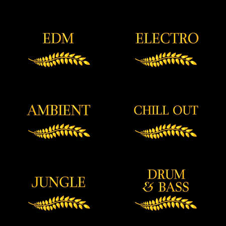 electronica: Electronic Music Genres 8