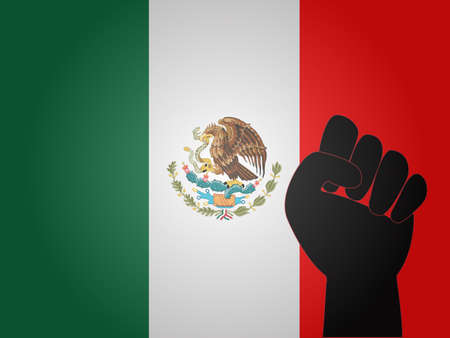Mexican Flag with Protest Sign