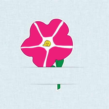 petunia: Flower Card Petunia