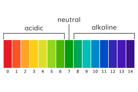 titration: Chart ph alkaline and acidic scale vector  illustration.