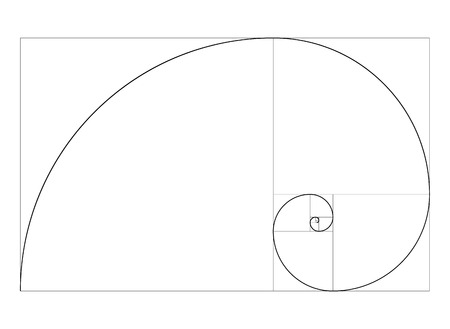 golden ratio template vector  spiral