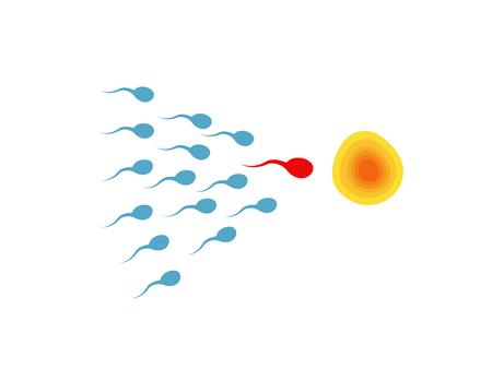 sperm semen icon vector  sperm penetration zygote symbol egg ovulation