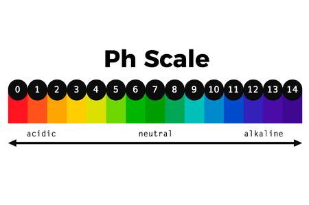ph scale vector chart ph indicator vector test acid alkaline balance