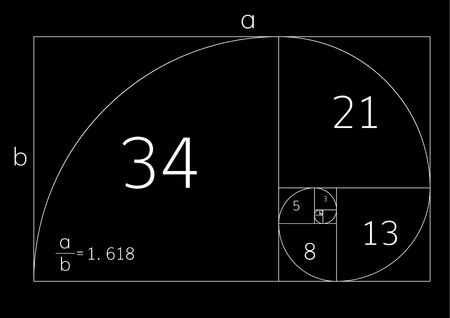 Golden ratio proportion , symmetry concept . Golden section Vector Illustration