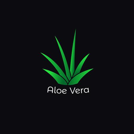 Green aloe vera plant icon . Vector isolated logo