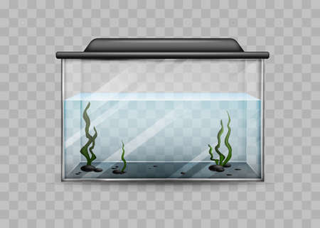 Transparent aquarium with water and algae isolated template. Rectangular container with black backlight lid and green underwater plants water world at home and vector office.