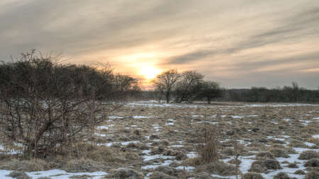 It is spring in Denmark and the sun rises over a meadow  photo