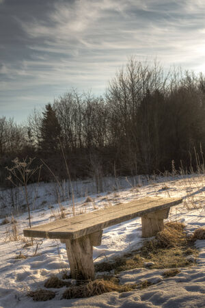 A wooden bench stands by a small lake  It is early morning and the frost on the bench is glittering in the sun light  photo
