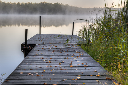Wooden pier with leafs Stock Photo