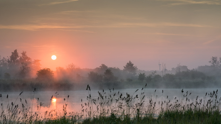 A lake with the rising sun above and wild grass in the foreground.