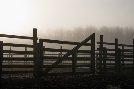 Silhouette of a gate to a paddock against the bright illuminated heavy morning fog.