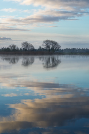 Trees and their reflection in a lake early morning. In the background a suburban area is partly visible. Stock Photo