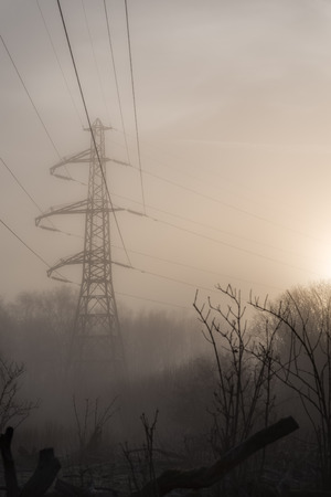Intrusive power line tower in a forest. The sun is rising.