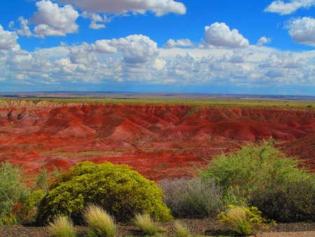 petrified: Sureal Petrified Forest,Arizona,Usa,