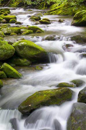 smokies: Silky smooth stream in the Smoky Mountains