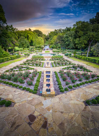 fort worth: Rose Garden Stock Photo