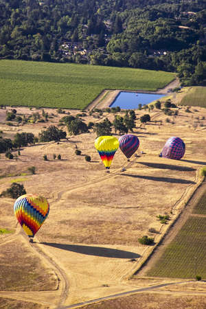 adventure aeronautical: Aerial view of colorful hot air balloons on the ground in Napa, California, USA