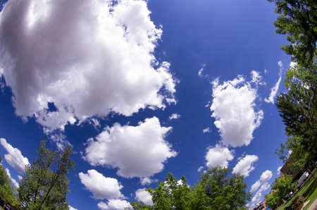 expansive: Expansive summer sky in northern New Mexico