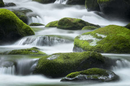 Cascading water over bright green moss-covered boulders in Tennessee