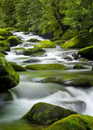 Agua sedosa cascada sobre las brillantes piedras cubiertas de musgo verde en una corriente Tennessee