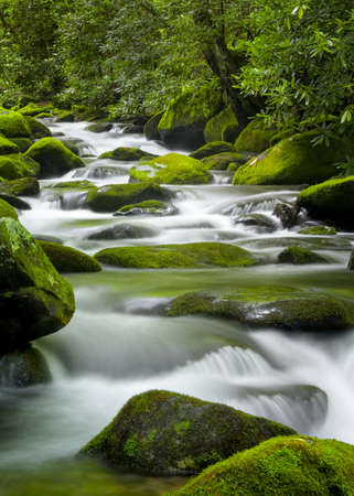 Silky water cascading over bright green moss-covered boulders in a Tennessee stream