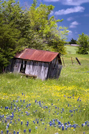pasture fence: Abandoned shed in an idyllic rural setting