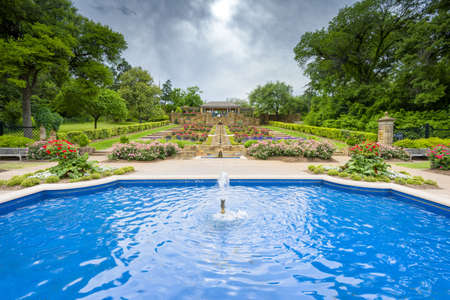 fort worth: Beautifully landscaped urban rose garden on a cloudy spring day in Texas