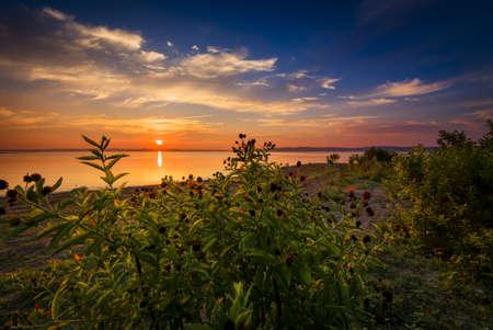 Sunrise at an urban lake in Texas Stock Photo