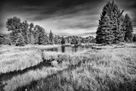 sequester: Summer morning view of the Snake River at Schwabacher Landing in Grand Teton National Park, WY Stock Photo