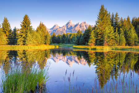 The Teton range's reflection upon the Snake River.  Photographed at dawn at Schwabacher Landing in Grand Teton National Park, WY photo