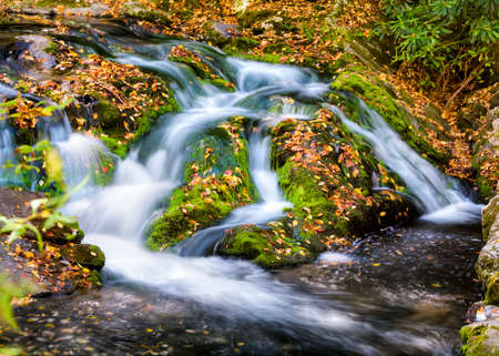 great smoky mountains national park: Cascading waterfall and autumn leaves in Great Smoky Mountains National park Stock Photo