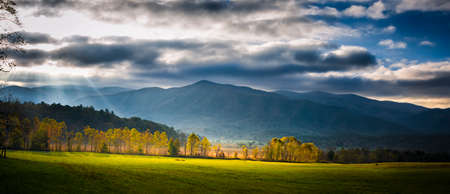 great smoky mountains national park: Shafts of early morning sunlight selectively lighting trees and a pasture in Great Smoky Mountains National Park