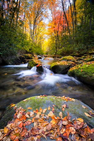 great smokies: Little River off of Tremont Rd. in Great Smoky Mountain National Park with fall colors on display Stock Photo