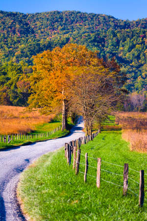 Late afternoon on a winding country road in Cades Cove, Great Smoky Mountains National Park photo