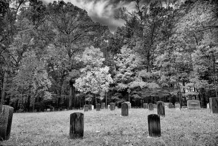 cove: Cemetery behind the Primitive Baptist Church in Cades Cove, TN